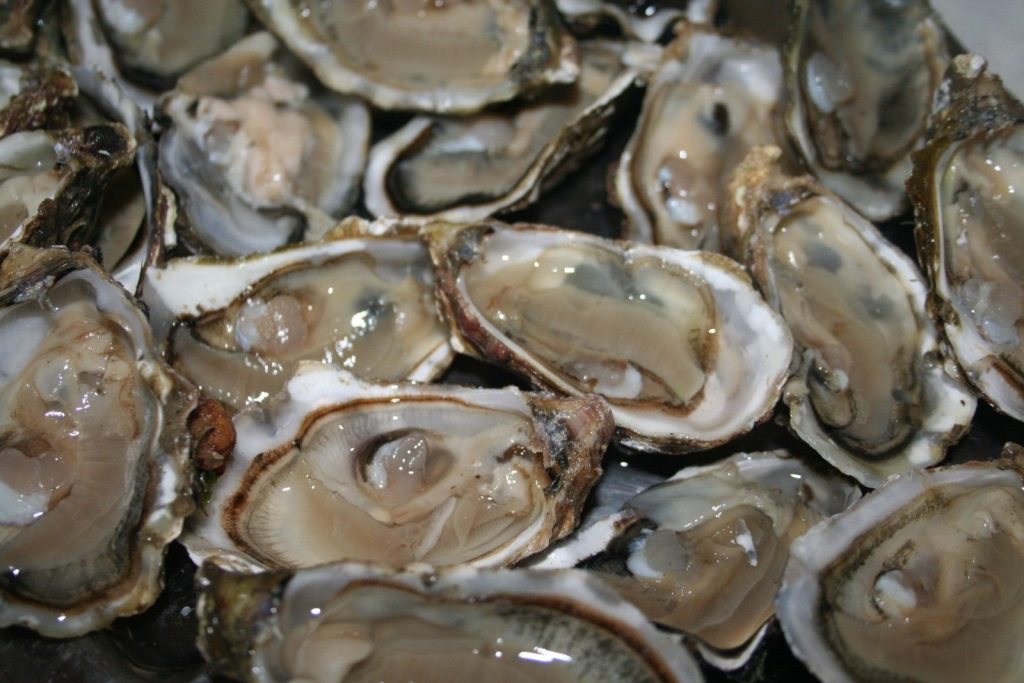 oesters huitres