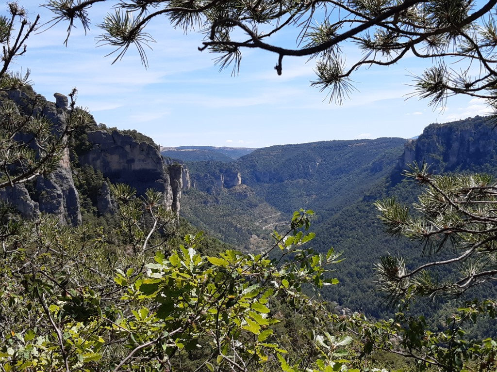 Gorges de la Jonte uitzicht vanaf Causse Méjean